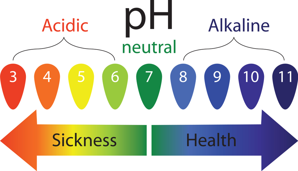 Balancing the pH level of the body