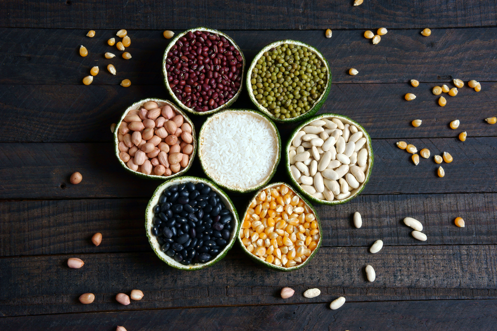 Importance of affordable protein