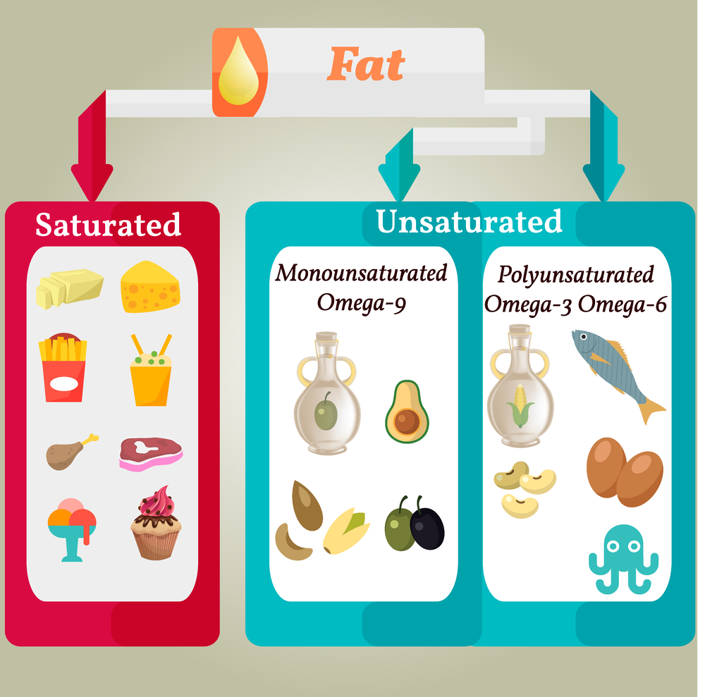 What is saturated fat?